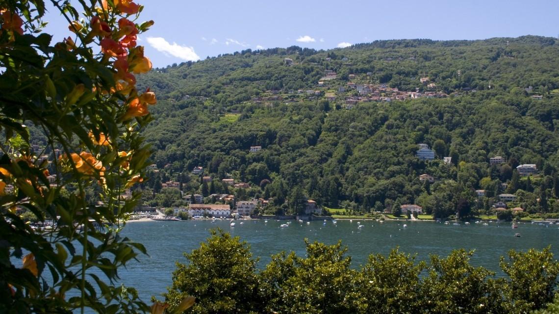 Lago Maggiore mit Blüten