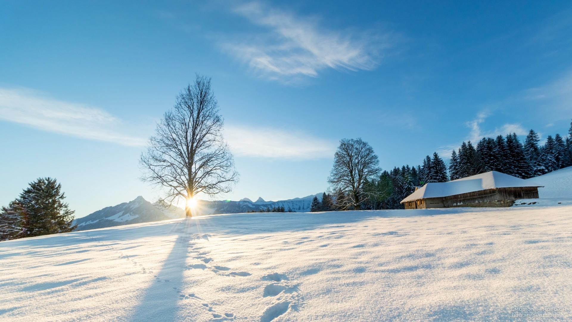 Gruyère Winter