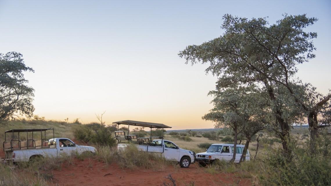 Juwel der Wüste - Im African Explorer von Namibia nach Kapstadt