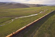 Zarengold Mongolei (Foto: Ross Hillier)