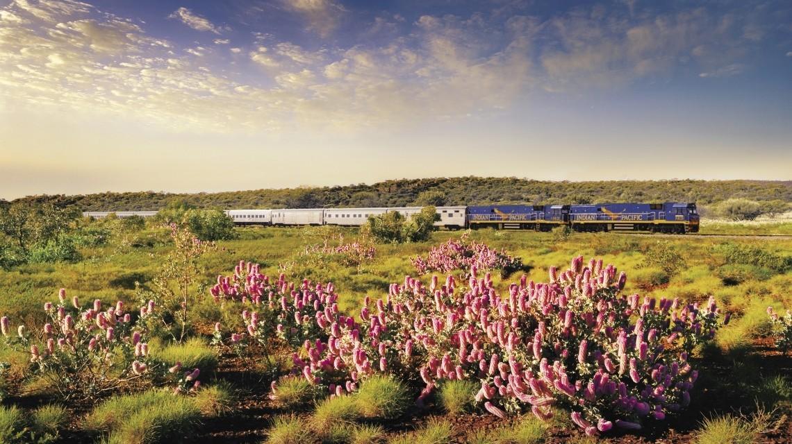 Auf Schienen durch die Weiten Australiens