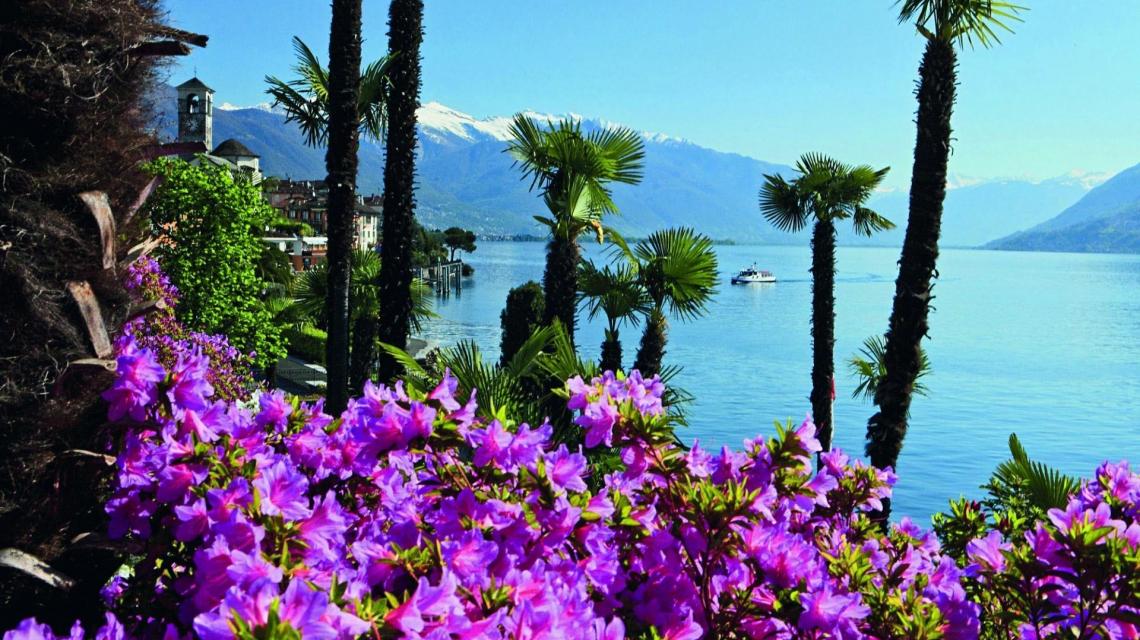 Blütenpracht am Lago Maggiore