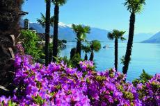 Blütenpracht am Lago Maggiore (Shutterstock)