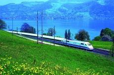 ICE Blumenwiese Alpen