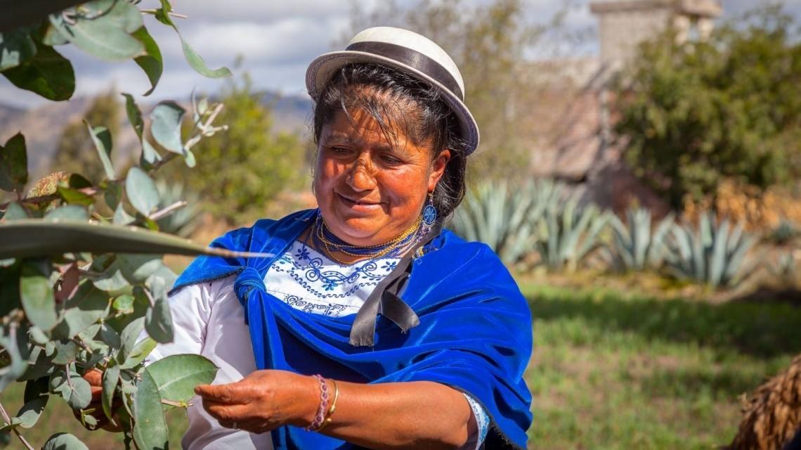 Frau sucht Medizinpflanzen