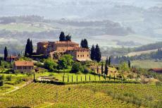 Landschaft - Toskana - Italien (shutterstock)