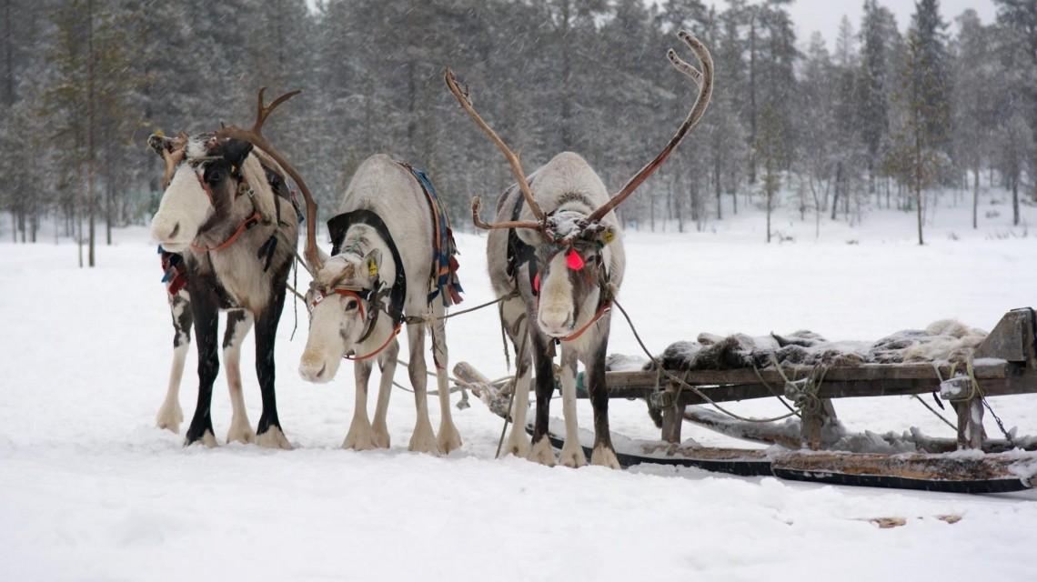 Winterzauber im Norden Russlands