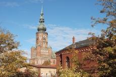 St. Nikolaikirche in Greifswald - shutterstock