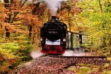 Rasender Roland auf Rügen (pixabay)